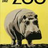 Zoo plakat - Flodhest -