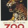 Zoo plakat - Leopard 2 -
