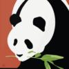 Zoo plakat - Panda 3 -